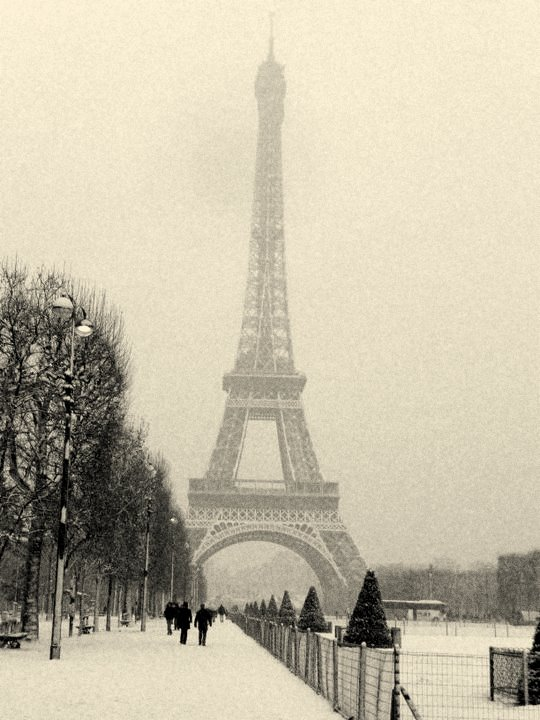 White Christmas in Paris