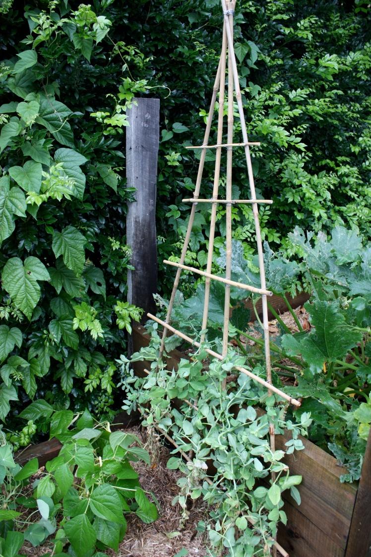 Bamboo Climbing Frame | brownpaperbelle.com