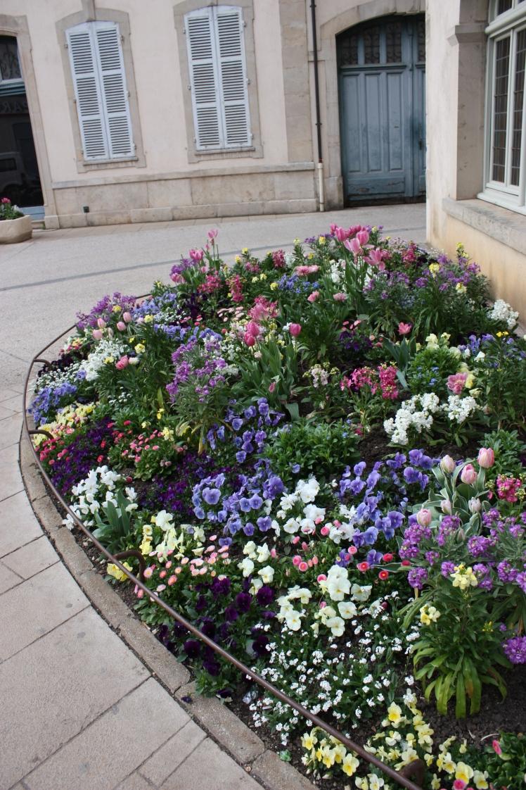 Beaune Spring Flowers | brownpaperbelle.com