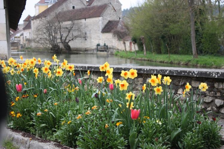 Vezelay Spring Flowers | brownpaperbelle.com