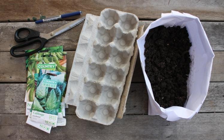 Egg Carton Seed Planting | brownpaperbelle.com